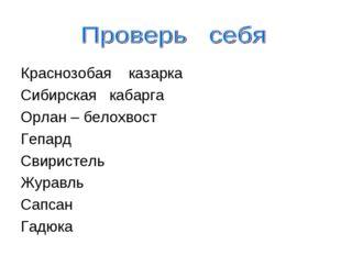 Краснозобая казарка Сибирская кабарга Орлан – белохвост Гепард Свиристель Жу