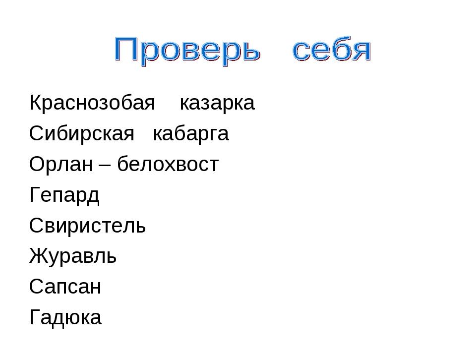 Краснозобая казарка Сибирская кабарга Орлан – белохвост Гепард Свиристель Жу...