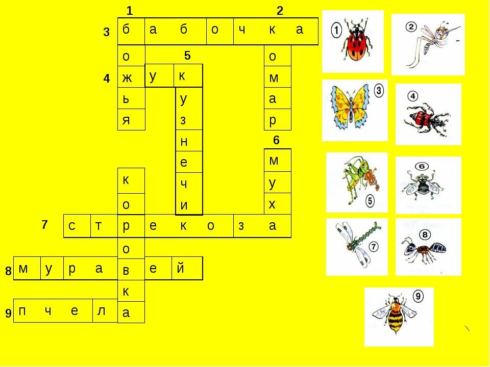 1 2 3 4 5 6 7 8 9 бабочка о м а р о ж ь я ук у з н е ч и стрекоз...