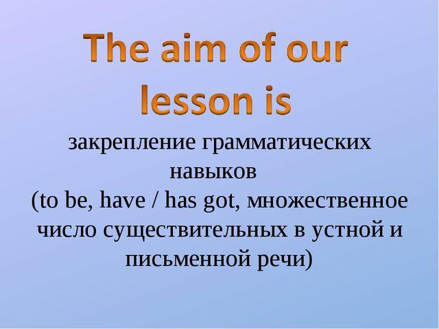 закрепление грамматических навыков (to be, have / has got, множественное числ...