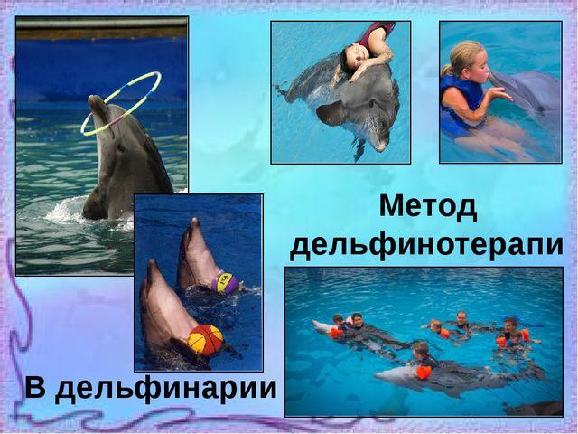 Метод дельфинотерапии В дельфинарии