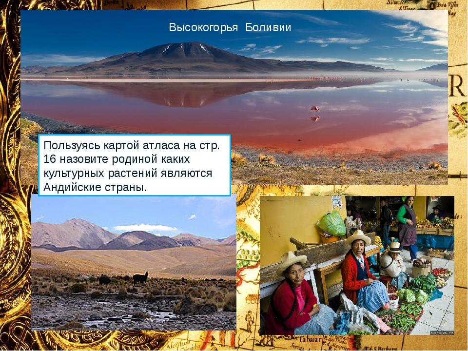 Коренное население Южной Америки: аймара, кечуа, бора. 1. Проанализируйте дан...