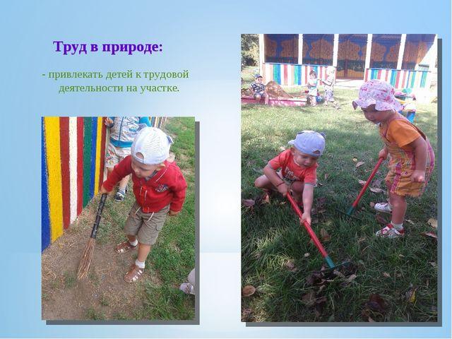 - привлекать детей к трудовой деятельности на участке. Труд в природе: