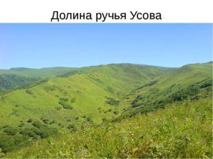 Долина ручья Усова