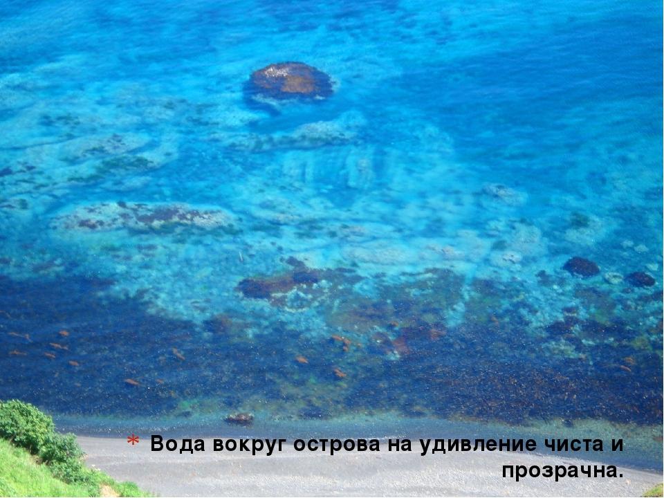 Вода вокруг острова на удивление чиста и прозрачна.