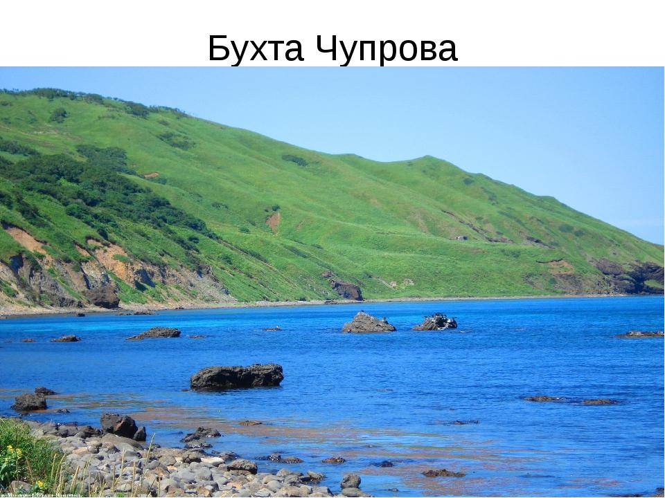 Бухта Чупрова