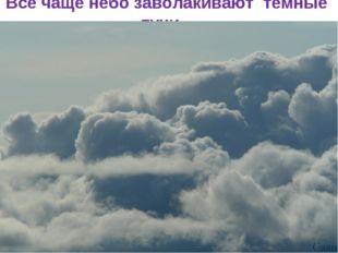 Всё чаще небо заволакивают тёмные тучи…