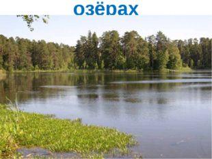 озёрах