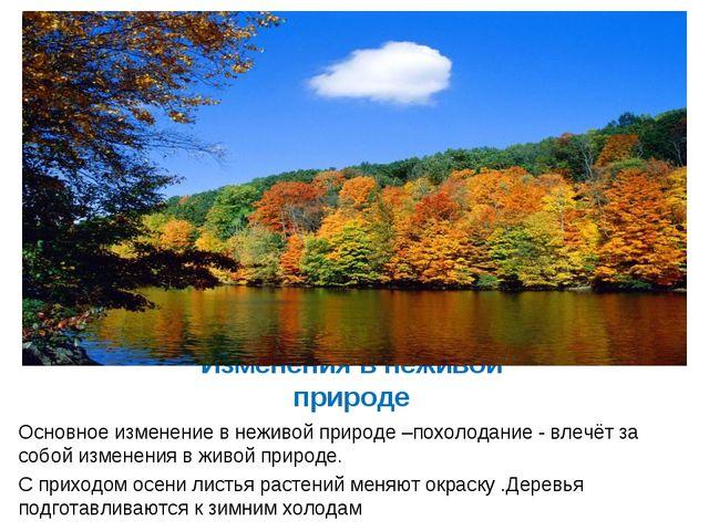 Изменения в неживой природе Основное изменение в неживой природе –похолодание...