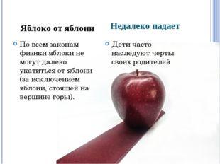 Недалеко падает По всем законам физики яблоки не могут далеко укатиться от яб