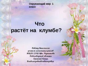 Ребята! Чтобы рассмотреть цветы, которые растут на клумбах, щелкните по цветк