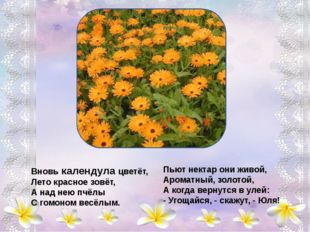 Гиацинт - цветок дождей – Кудрявая головушка, Улыбнись же поскорей, Тебе поё