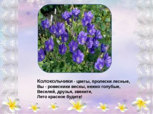 Ссылки на интернет-ресурсы http://ramki-photoshop.ru/fony/fon-195.jpg http://