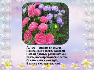 Колокольчики - цветы, пролески лесные, Вы - ровесники весны, нежно голубые,