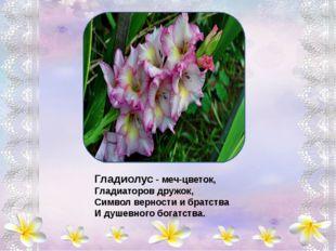 В нежный бархат все цветы Солнышком одеты, Капли утренней росы Словно самоцв