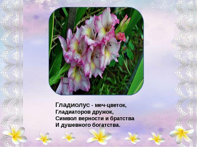 В нежный бархат все цветы Солнышком одеты, Капли утренней росы Словно самоцв...