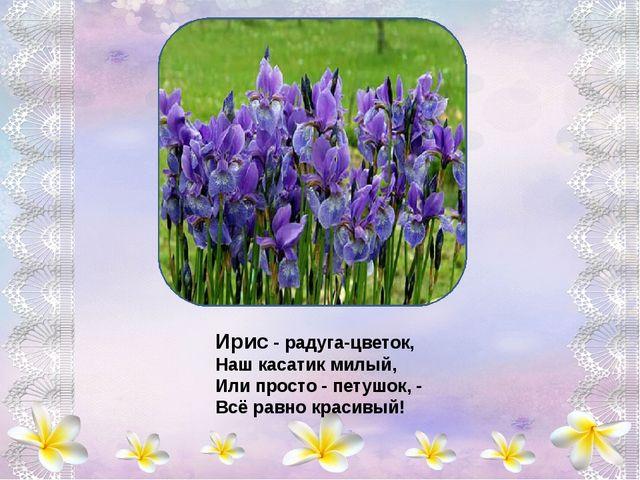 Осени поздней прощальный костёр В гроздьях рябин догорает, А георгины в саду...