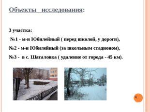 Объекты исследования: 3 участка: №1 - м-н Юбилейный ( перед школой, у дороги)