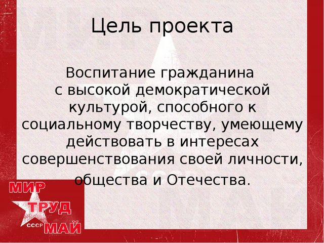 Цель проекта Воспитание гражданина с высокой демократической культурой, спосо...
