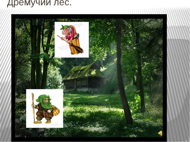 Дремучий лес.