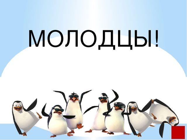 http://oboi.kards.qip.ru/images/wallpaper/8b/56/153227_1024_768.jpg -пингвин...