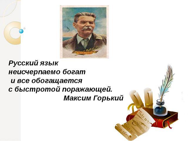 Русский язык неисчерпаемо богат и все обогащается с быстротой поражающей. Мак...