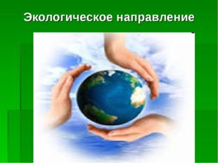 Экологическое направление