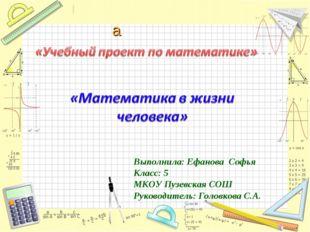Выполнила: Ефанова Софья Класс: 5 МКОУ Пузевская СОШ Руководитель: Головкова