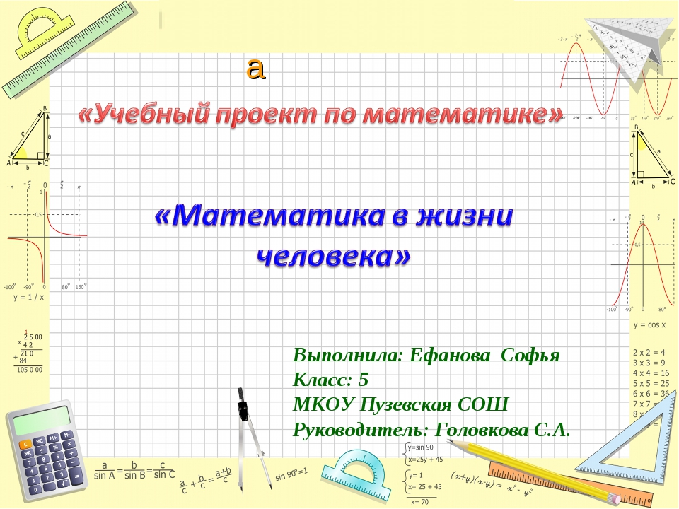 Выполнила: Ефанова Софья Класс: 5 МКОУ Пузевская СОШ Руководитель: Головкова...