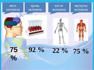 мозг человека 75 % кровь человека 92 % кости человека 22 % мускулы человека 7