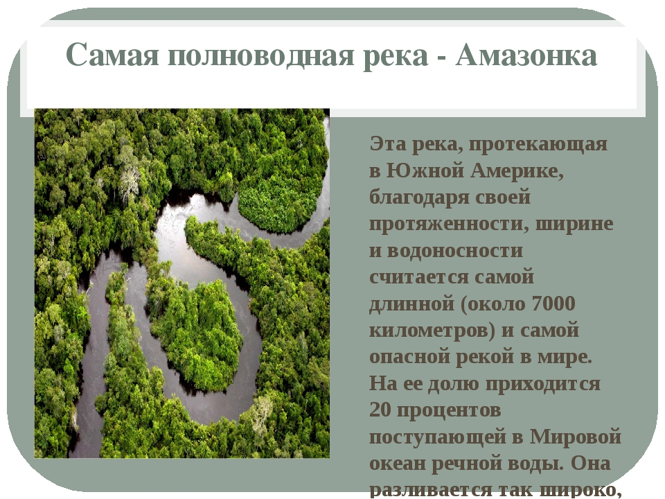 Самая полноводная река - Амазонка Эта река, протекающая в Южной Америке, благ...