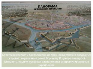 Брестская крепость расположена на трех ,искусственно созданных островах, окру