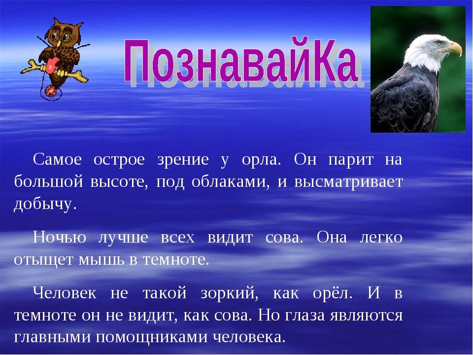 Самое острое зрение у орла. Он парит на большой высоте, под облаками, и высма...
