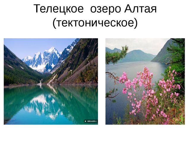Телецкое озеро Алтая (тектоническое)