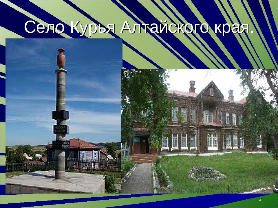 Село Курья Алтайского края. *