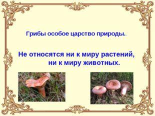 Грибы особое царство природы.. Не относятся ни к миру растений, ни к миру жи