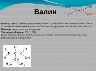 Валин Валин(2-амино-3-метилбутановая кислота)—алифатическаяα-аминокислота