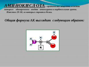 АМИНОКИСЛОТА – органическое вещество, в состав которого одновременно входят а