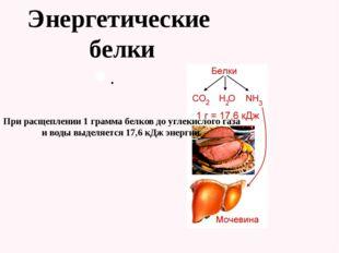 . Энергетические белки При расщеплении 1 грамма белков до углекислого газа и
