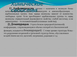 Химические свойства 1) Амфотерность связана с наличием в молекуле белка катио