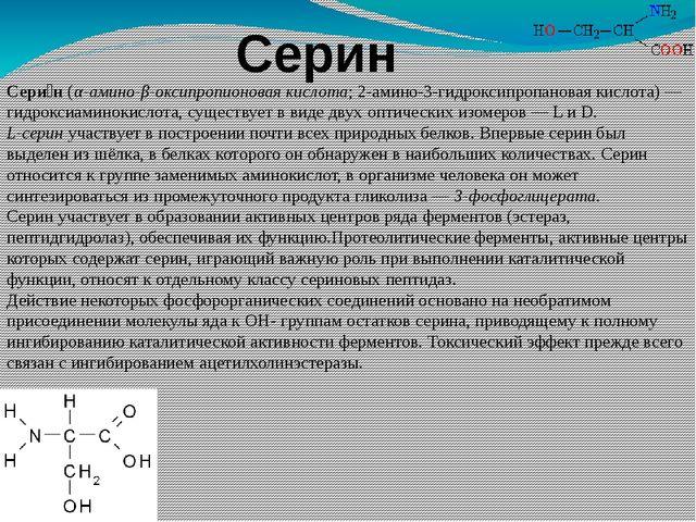 Серин Сери́н(α-амино-β-оксипропионовая кислота; 2-амино-3-гидроксипропановая...
