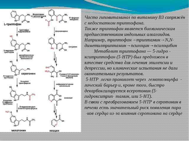 Часто гиповитаминоз по витамину B3сопряжён с недостатком триптофана. Также т...