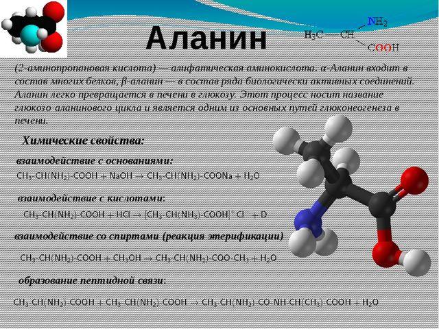 Аланин (2-аминопропановая кислота)—алифатическаяаминокислота. α-Аланин вхо...