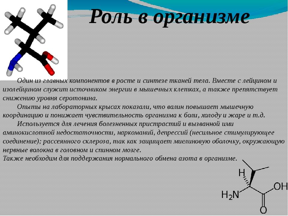 Роль в организме Один из главных компонентов в росте исинтезетканей тела....