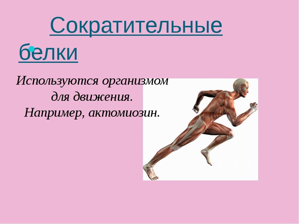 Сократительные белки . Используются организмом для движения. Например, актом...