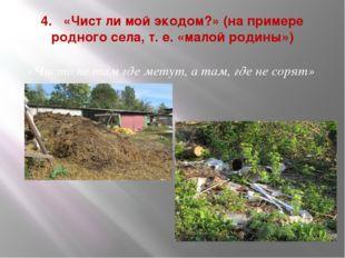 4. «Чист ли мой экодом?» (на примере родного села, т. е. «малой родины») «Чис