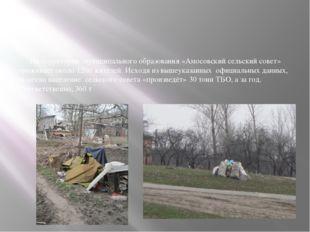 На территории муниципального образования «Амосовский сельский совет» прожива