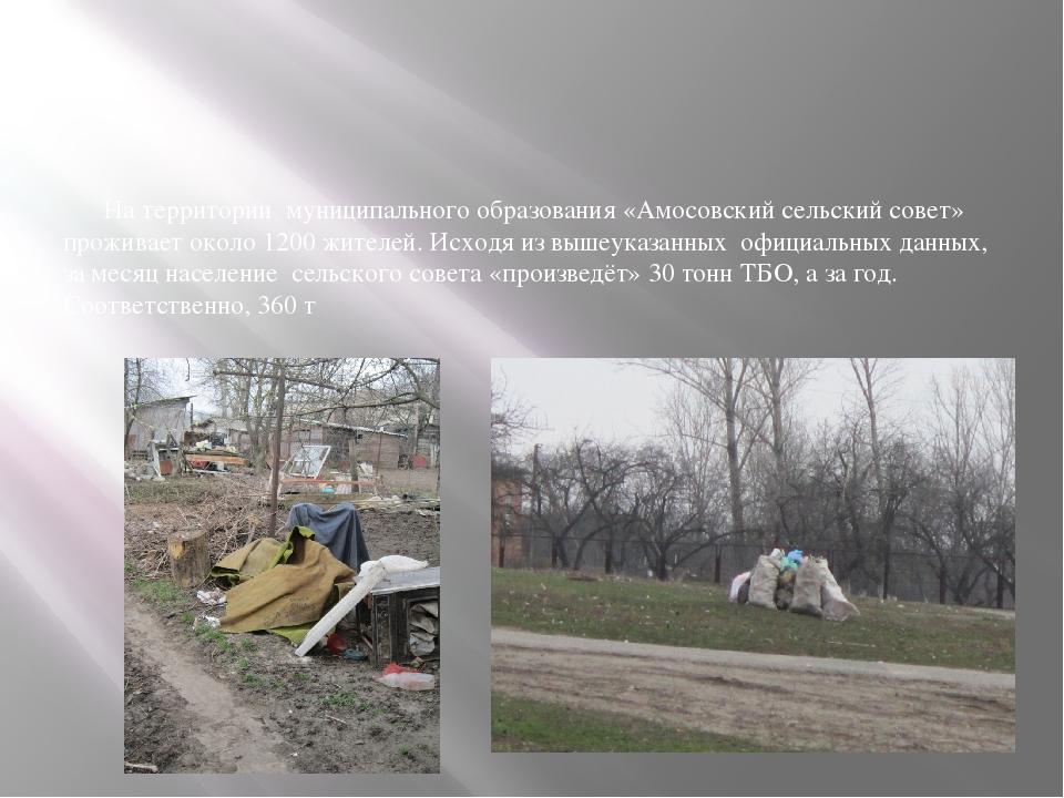 На территории муниципального образования «Амосовский сельский совет» прожива...