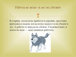 В старину, когда волк прибегал в деревню, крестьяне прятались и ждали, когда