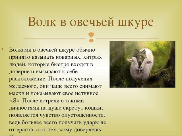 Волками в овечьей шкуре обычно принято называть коварных, хитрых людей, котор...